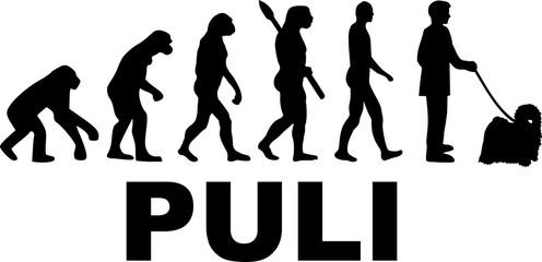 Puli evolution word