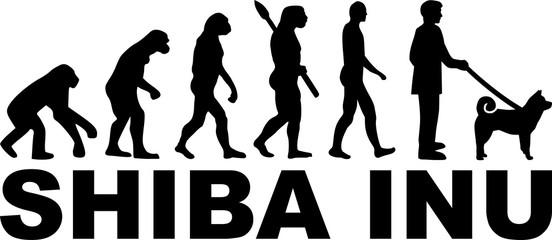 Shiba inu evolution word