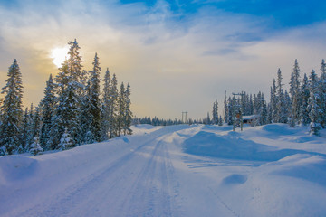 View of road partial covered with heavy snow, and pine trees in the forest