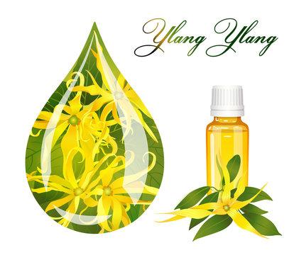 drop of ylang ylang