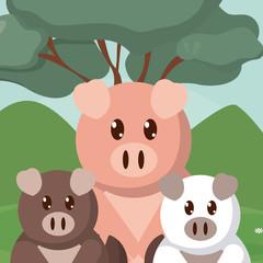 Pigs family cute animals cartoons