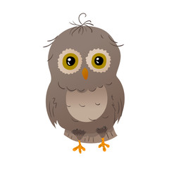 owl animal character brown. cartoon animal. standing white isolated background.