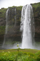 Waterfall Seljalandsfoss in the south coast of Iceland.