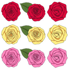 Set of color illustrations with roses and leaves. Isolated vector objects on white background.