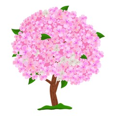Flowering pink tree isolated on white background. Spring blooming tree with flowers. Apple tree, cherry and sakura. Vector Illustration