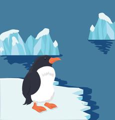 Arctic Penguin on ice floe