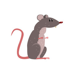 Cute grey mouse, funny rodent character vector Illustration on a white background