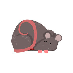 Cute grey mouse sleeping, funny rodent character vector Illustration on a white background