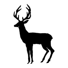 Deer. Black cut silhouette on a white background. Hand drawn design elements. Vector illustration.