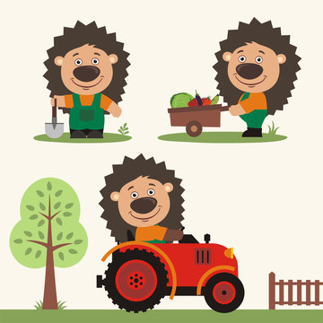 Set of funny hedgehog farmer with shovel, with wheelbarrow with vegetables, in farm tractor. Collection of hedgehog is working on the farm.