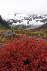 Chinese mountain landscape in autumn