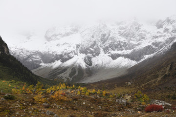 Snow covered mountain landscape and vegetation in autumn colours