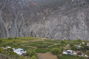 Village and vineyards in valley with mountain wall background