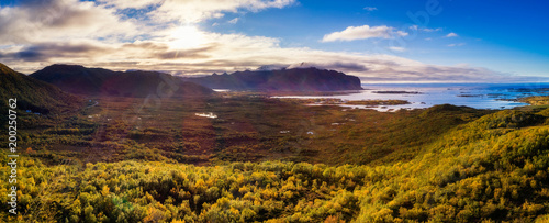Wall mural Aerial view of a scenic coast on Lofoten islands in Norway