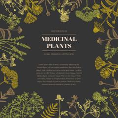 Medicinal plants.