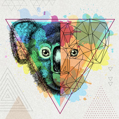 Hipster animal realistic and polygonal koala on artistic watercolor background