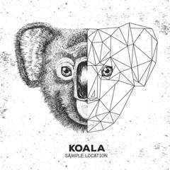 Hipster animal realistic and polygonal koala face. Triangle animal