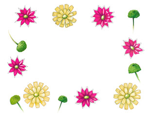 Hand drawn colorful flowers isolated on white background