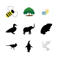 icon Animal with penguin, love, cavy, north and cloud