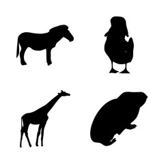 icon Animal with toy, logo, popular, black and isolated