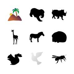icon Animal with bird, pet, elephant, wildlife and black