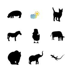 icon Animal with monochrome, bird, animals, tattoo and safari