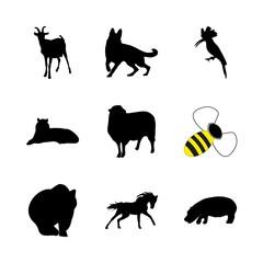 icon Animal with logo, head, arabian horse, bulbul and asian tiger