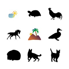 icon Animal with mare, duck, bird, pet and logo