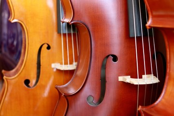 close-up image of a violin in a shop