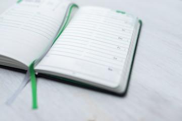 Grüner Terminkalender/Planer Geöffnet