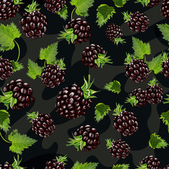 Blackberry vector seamless pattern.