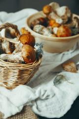 Many mushrooms in basket