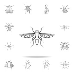 mosquito icon. Detailed set of insects line illustrations. Premium quality graphic design icon. One of the collection icons for websites, web design, mobile app