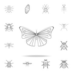 butterfly icon. Detailed set of insects line illustrations. Premium quality graphic design icon. One of the collection icons for websites, web design, mobile app