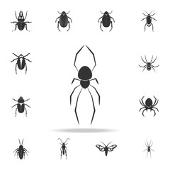 Spider Karakurt. Detailed set of insects items icons. Premium quality graphic design. One of the collection icons for websites, web design, mobile app
