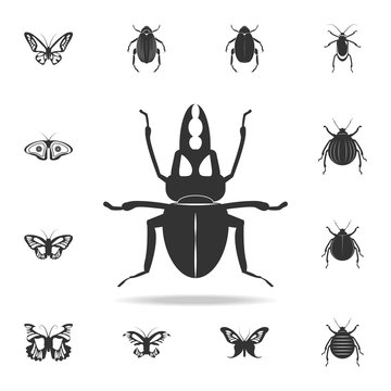 stag beetle. Detailed set of insects items icons. Premium quality graphic design. One of the collection icons for websites, web design, mobile app