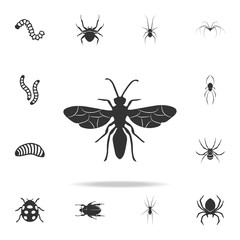 flying ant. Detailed set of insects items icons. Premium quality graphic design. One of the collection icons for websites, web design, mobile app
