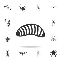 larva. Detailed set of insects items icons. Premium quality graphic design. One of the collection icons for websites, web design, mobile app