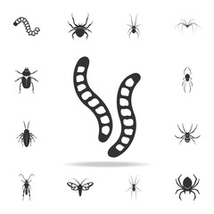 caterpillars. Detailed set of insects items icons. Premium quality graphic design. One of the collection icons for websites, web design, mobile app