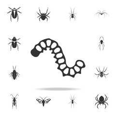 worm. Detailed set of insects items icons. Premium quality graphic design. One of the collection icons for websites, web design, mobile app