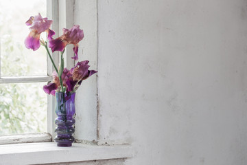 iris in vase on windowsill