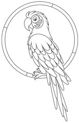Parrot macaw sitting on a ring, a black and white vector illustration in a cartoon style for a coloring book