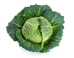 Savoy cabbage isolated on white background.