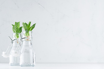Green young mint leaves in bottle with mineral water on soft white wood board. Summer background, copy space.