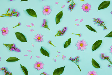 Flatlay floral background with daisies, wildflowers, petals and leaves, blue background.