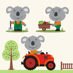 Set of funny koala farmer with shovel, with wheelbarrow with vegetables, in farm tractor. Collection of koala is working on the farm.