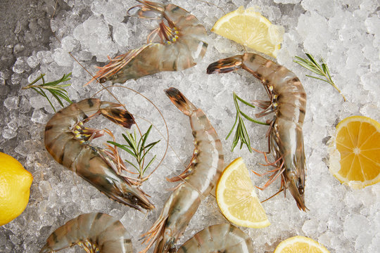 top view of raw prawns with rosemary and lemon slices on crushed ice