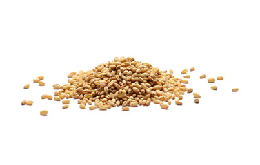 Wheat grains, pile isolated on white background