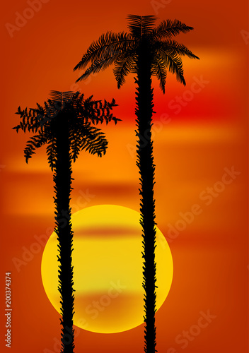 two palm trees and yellow large sun on background stock image and