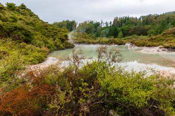 Spectacular Geothermal activity in Rotorua New Zealand
